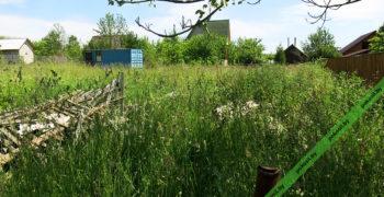 Заросший травой участок с мусором