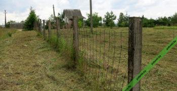 Скошенная и убранная трава